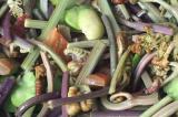 素炒蕨菜的功效及做法