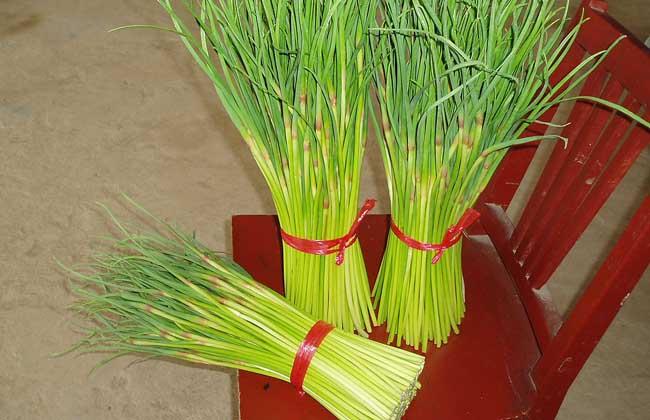 蒜苔的功效与作用