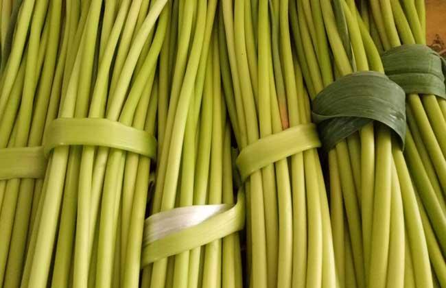 蒜苔的营养价值