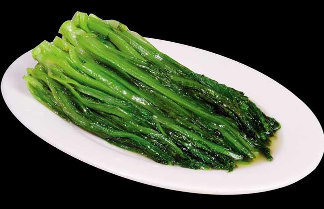 孕妇可以吃油麦菜吗