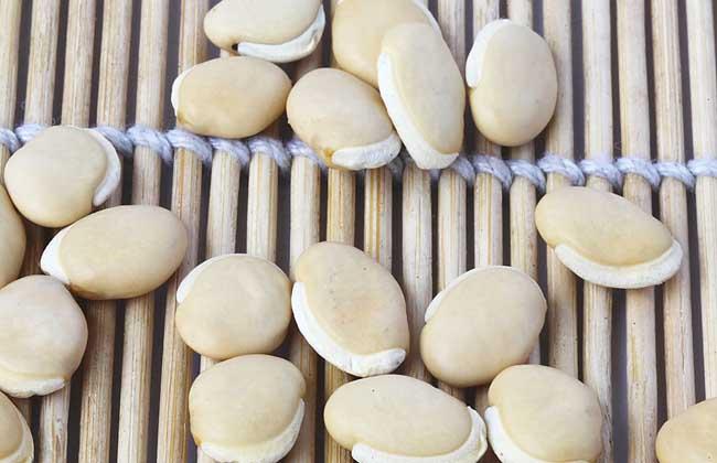 白扁豆的功效与作用