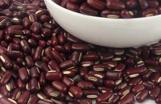 赤小豆能减肥吗