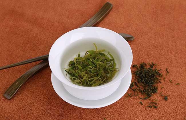 苦丁茶属于什么茶?