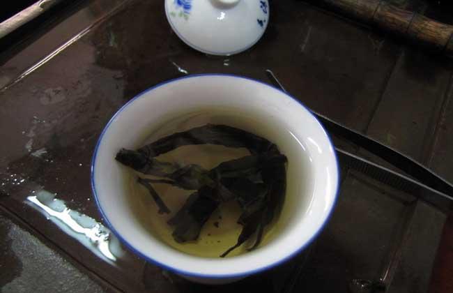 苦丁茶属于什么茶