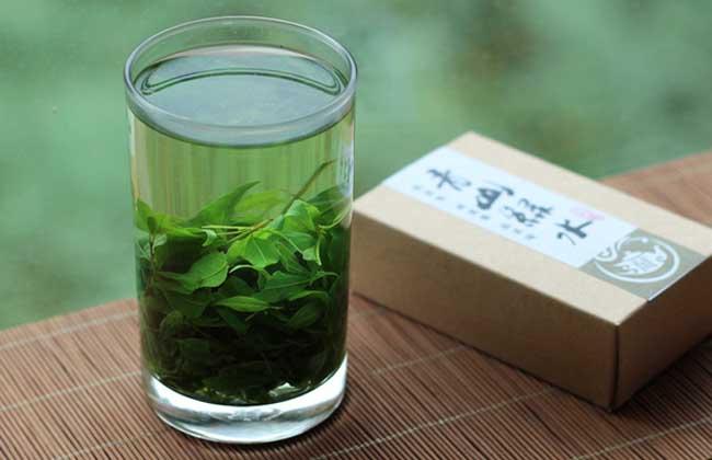 苦丁茶种类