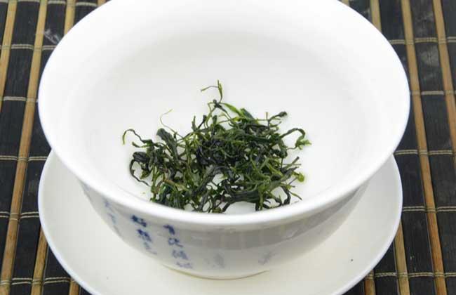 小叶苦丁茶