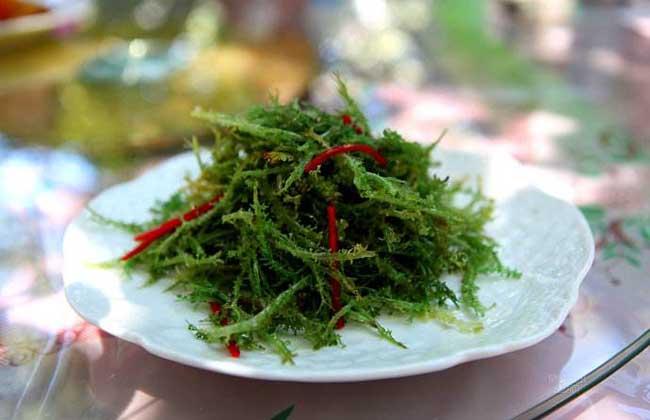 鹿角菜的营养价值