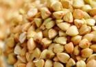 荞麦的功效与作用