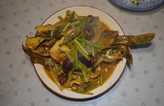 酱香黄骨鱼