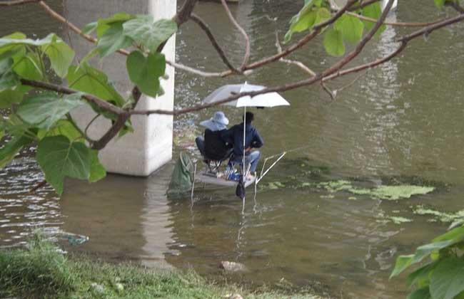 初夏钓鱼技巧