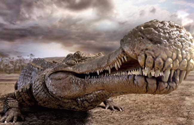 猪鳄能吃恐龙吗