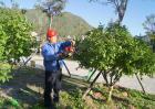 绿化工的国家职业标准