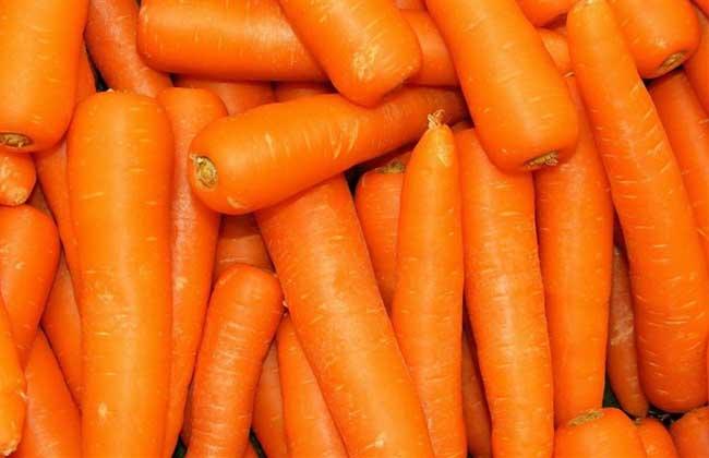 胡萝卜什么时候传入中国