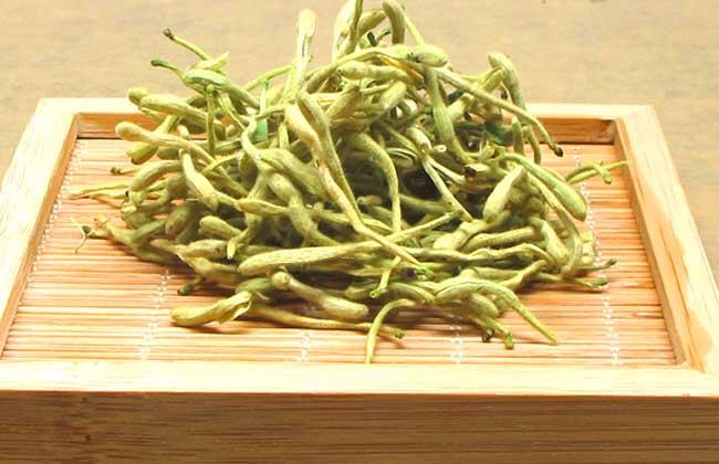 金银花茶多少钱一斤