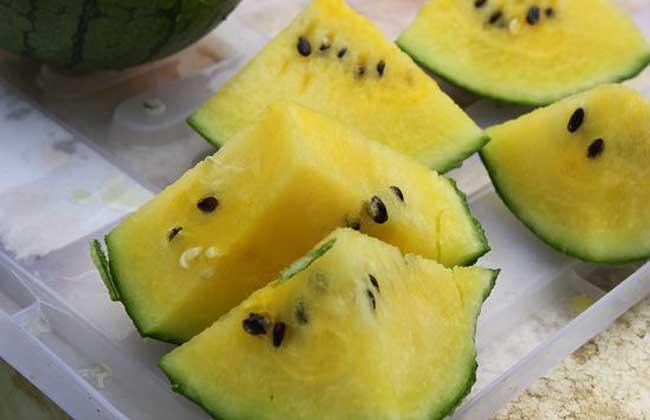 黄瓤西瓜多少钱一斤
