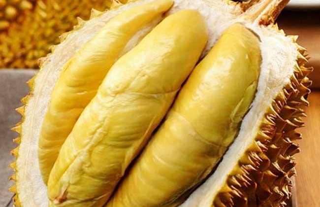 榴莲价格多少钱一斤?
