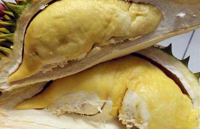 榴莲肉怎么保存