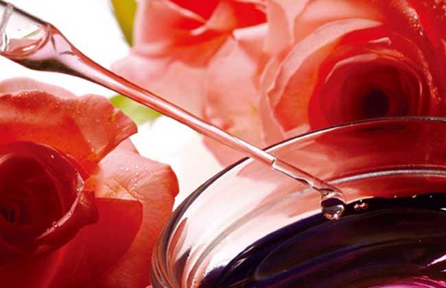 玫瑰精油多少钱