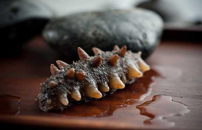 哪些人不能吃海参