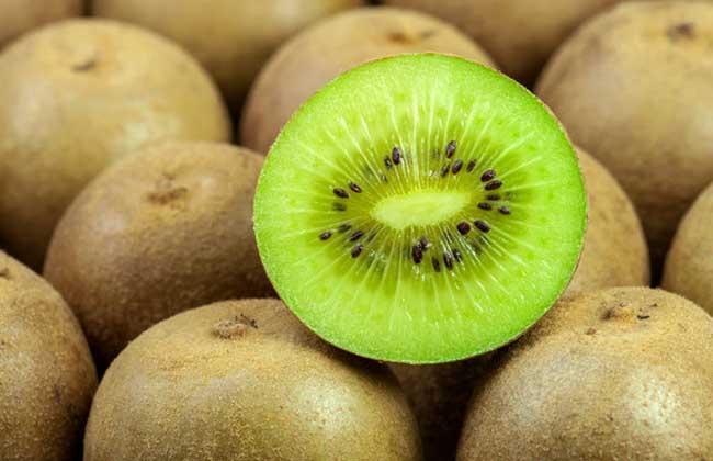奇异果和猕猴桃的区别