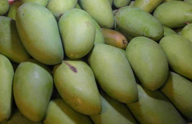没熟的青芒果怎么吃?