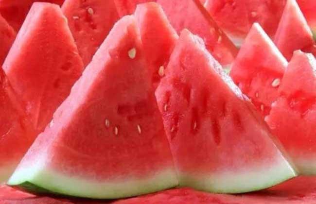 吃西瓜可以减肥吗