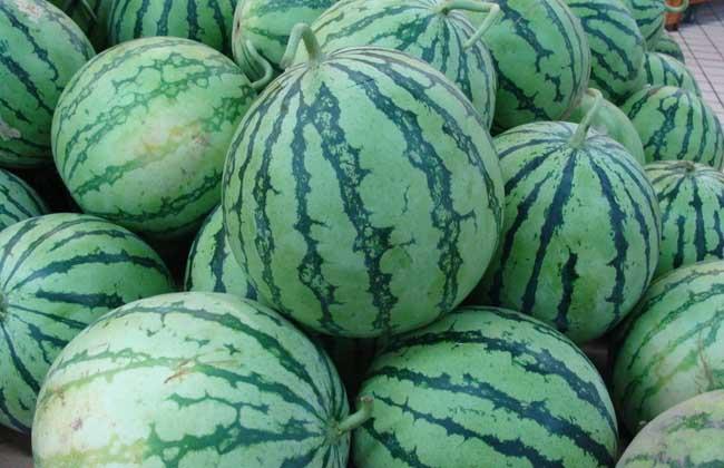 西瓜是热性还是凉性