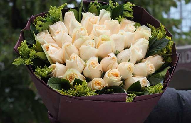 香槟玫瑰多少钱一朵?