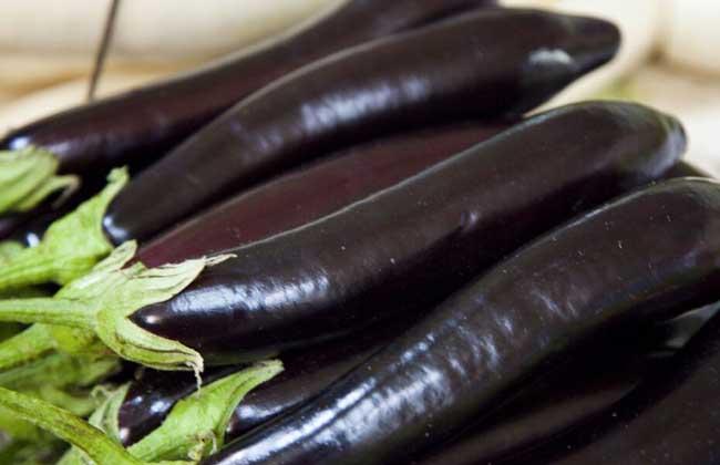 水煮茄子可以减肥吗?