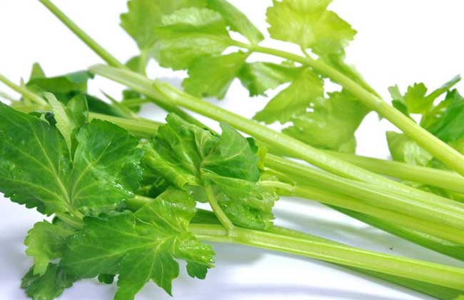 芹菜的功效与作用
