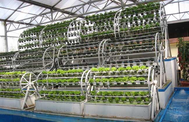 无土栽培营养液配方