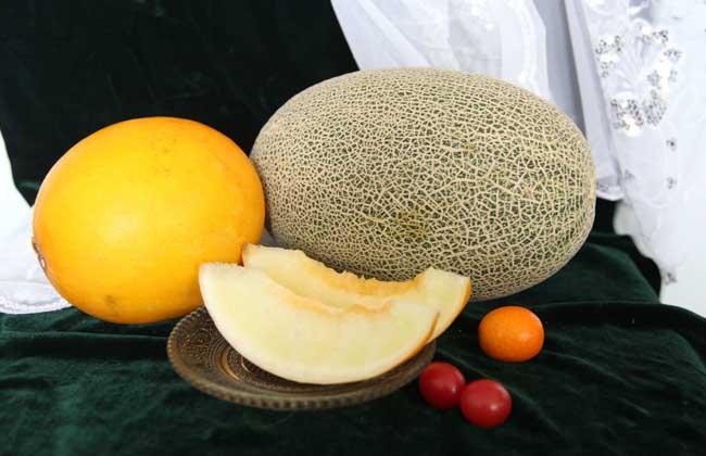 哈密瓜的功效与作用及禁忌