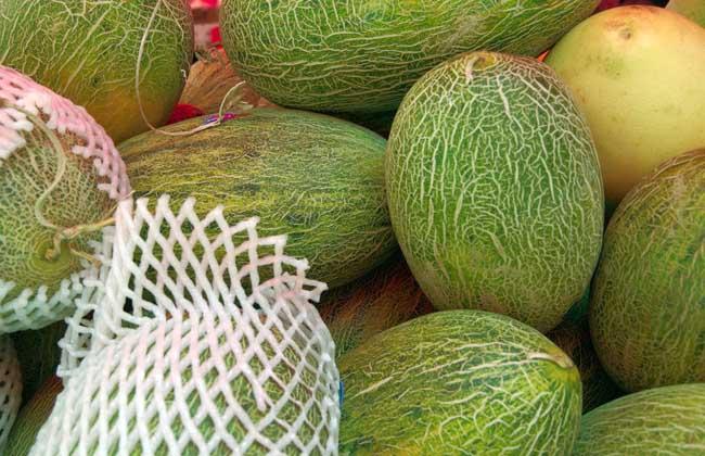 哈密瓜和什么榨汁好喝