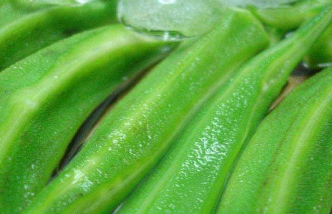 吃秋葵能补肾壮阳吗?