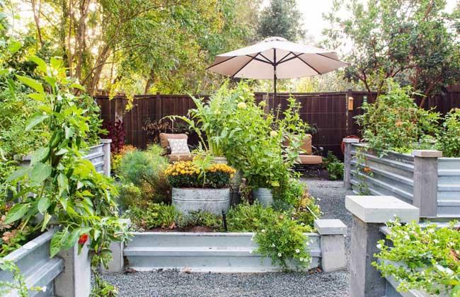 家庭小菜园