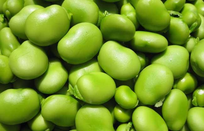 蚕豆的功效与作用