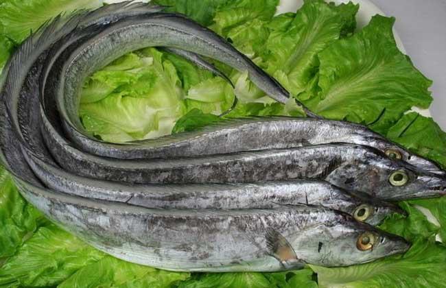 孕妇可以吃带鱼吗?