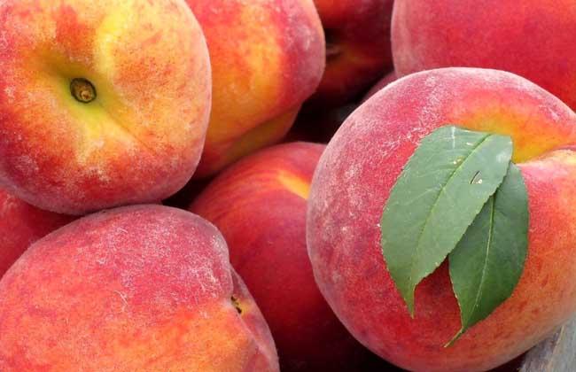 产妇可以吃桃子吗?