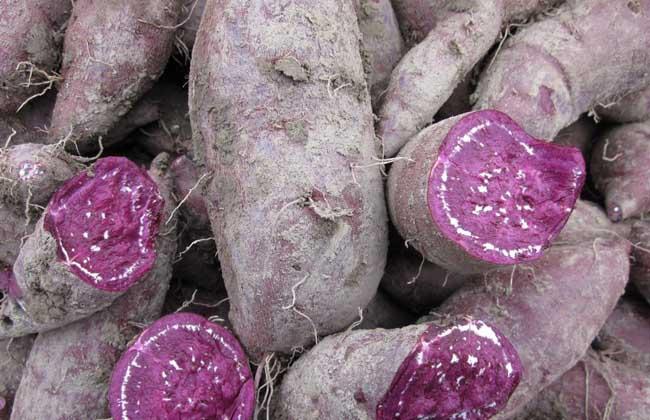 紫薯蒸着吃还是煮着吃?