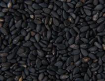 黑芝麻怎么吃最补肾?