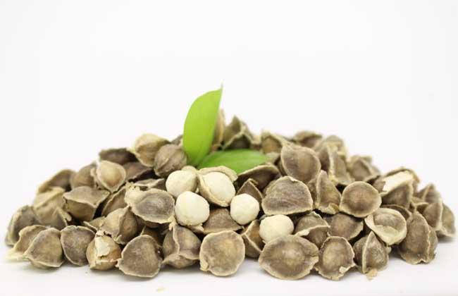辣木籽怎么吃