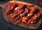 小龙虾苗种产量低的原因和改进方法