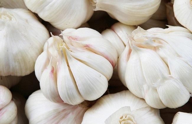 白皮蒜和紫皮蒜的区别