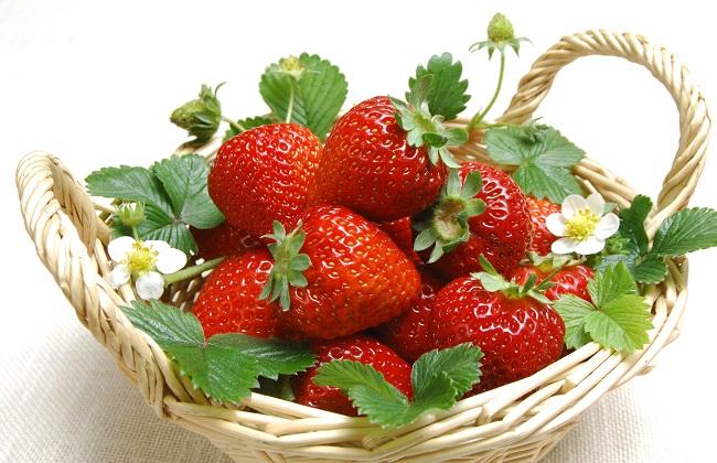 草莓怎么快速催熟