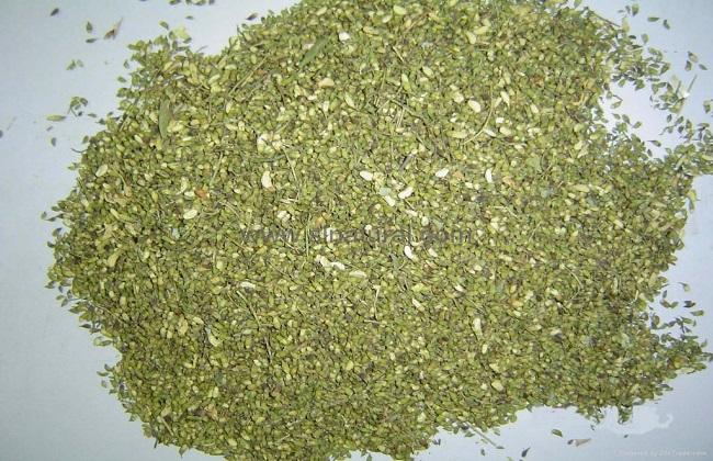 槐米泡水的功效与副作用