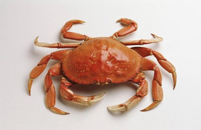2018螃蟹价格行情走势