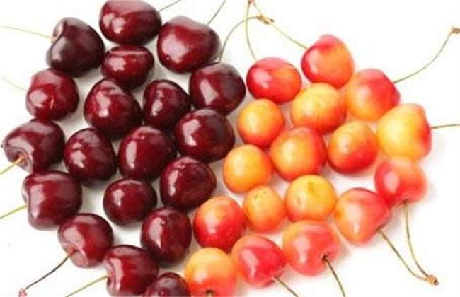 车厘子和樱桃区别