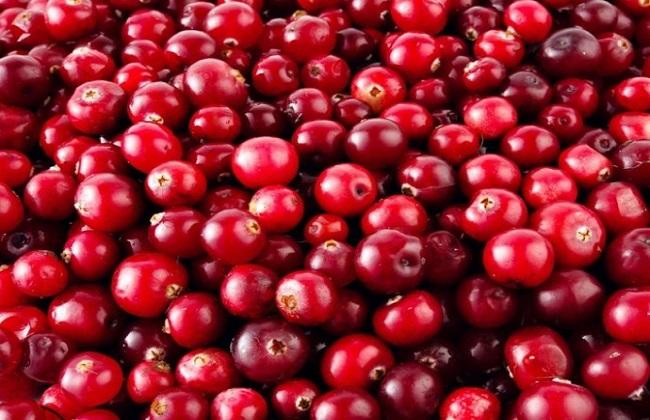 蔓越莓作用2