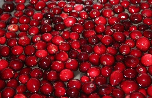 蔓越莓作用4