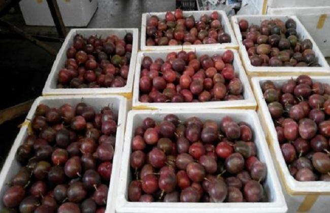 2018百香果的种植前景